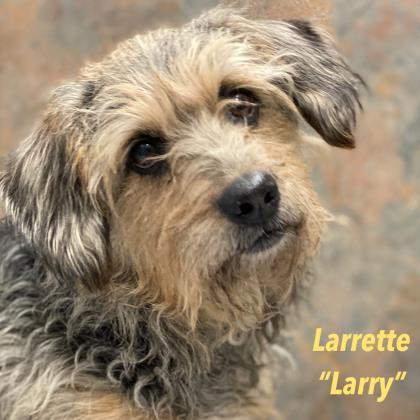 Larrette 'Larry'