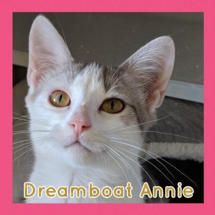 Dreamboat Annie