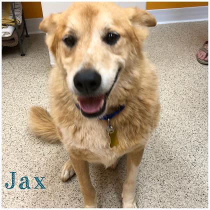 Jax 2-bonded with Azi