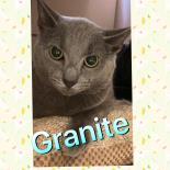 Photo of Granite