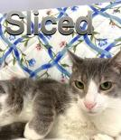 Photo of Sliced